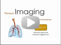 CT anatomy of the chest - DRE 2 - Dr Mamdouh Mahfouz
