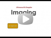 Radiological anatomy of the Urinary Tract and ultrasound role