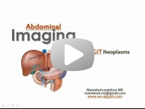 Imaging of GIT neoplasms (Dec 2013) - Dr Mamdouh Mahfouz (In English)