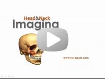 Head & Neck Film Reading session - Dr Manar Hussien