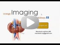 Renal imaging part 2 dr mamdouh mahfouz