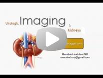 Genito-urinary imaging - for non arab