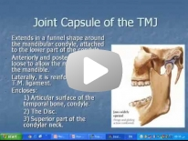 MRI of the TMJ - Dr Manar Hussien